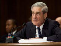 Investigating The Mueller Investigation -Stone Washington